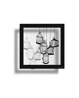 stickers-ombre-cadre-cages
