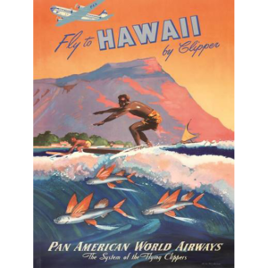poster-vintage-surf-fly-hawai